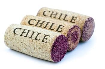 139389 425x282 chile corks