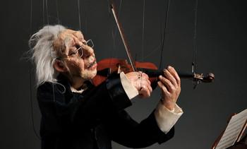 Violinist cashores 1111
