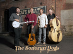Sonoran_dogs