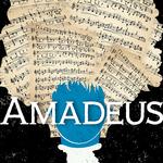 Ppf_amadeus_2x2