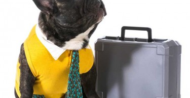 5-Major-Don'ts-for-Your-First-Day-of-Work