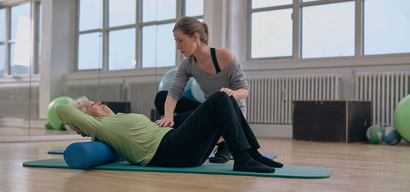 how to become a physical therapist, Human Body