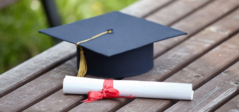 7 Highest Paying Bachelor Degrees