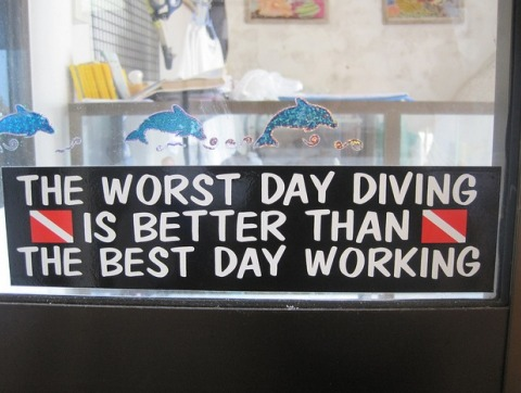 better-than-the-best-day-working-diving-bumper-sticker