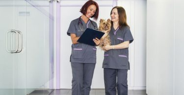 veterinary-receptionist