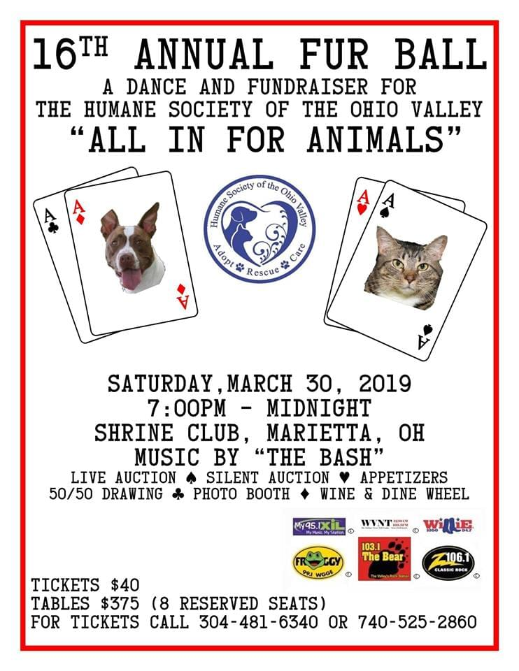 """16th Annual Fur Ball """"All in for Animals"""""""