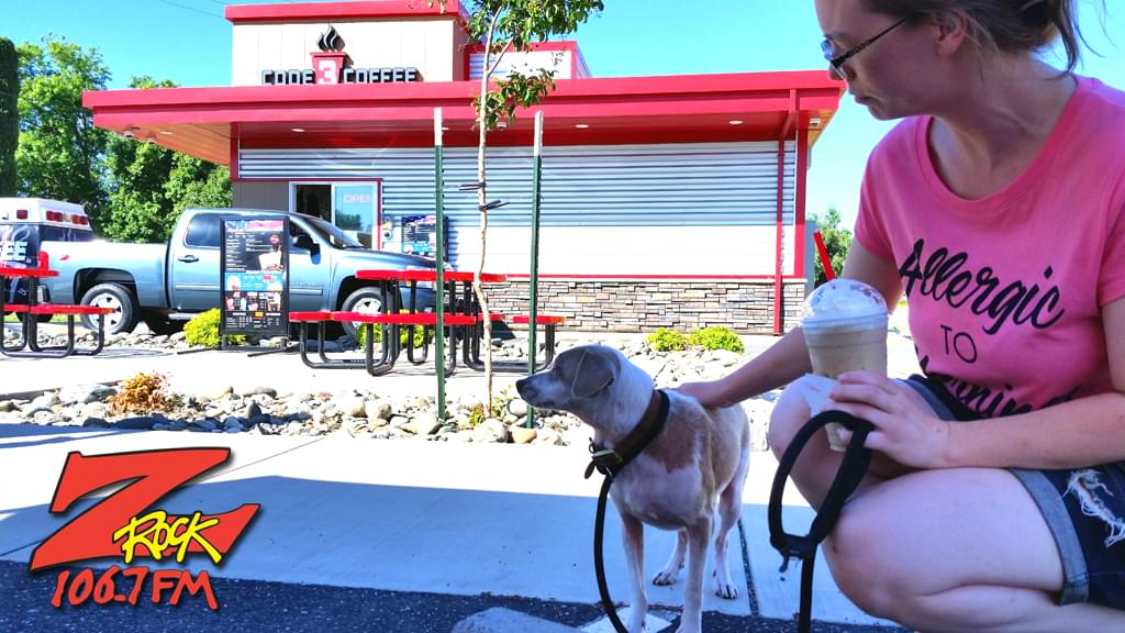 Doggo at Code 3 Coffee in Chico California for Wake the Buc Up 2019 on 106.7 Z-Rock