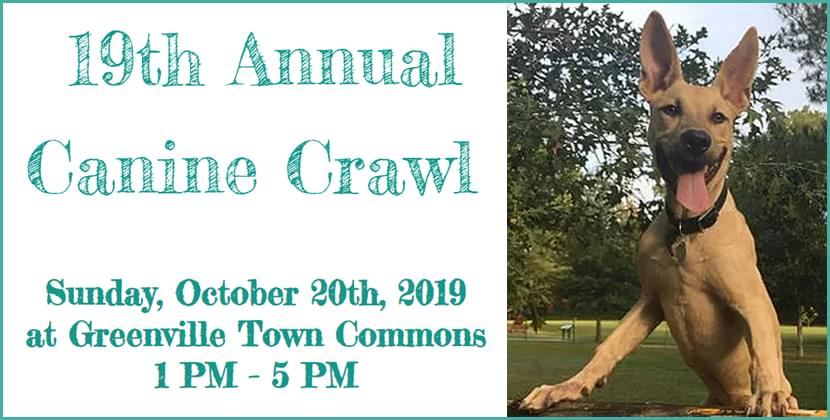 Humane Society Of Eastern Carolina Canine Crawl