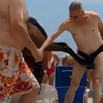 Man Gets Kicked In The Groin On A Beach…By A Horse