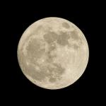 Moon Rock!