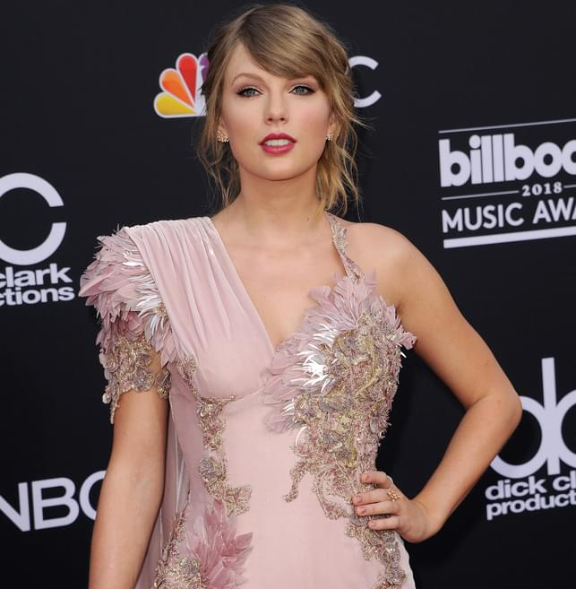 Taylor Swift Makes Big Announcement On Instagram. Her Cat Meredith Had Other Plans