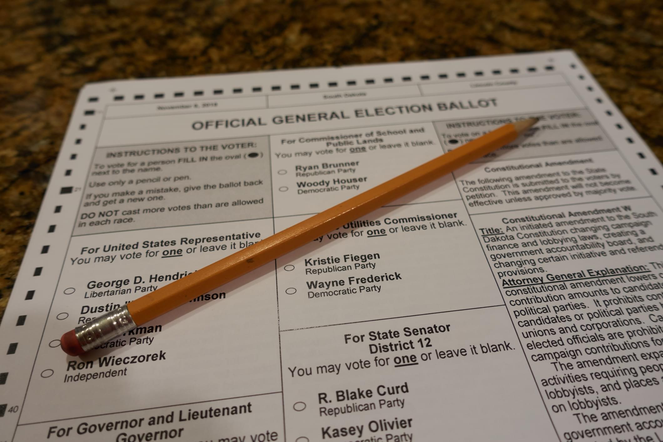 Blank 2018 midterm ballot