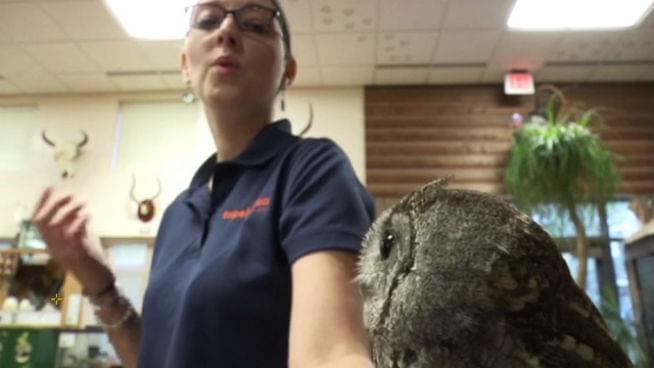 Topeka Zoo Employee Needs Your Vote