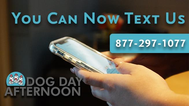 Text Line Now Open!
