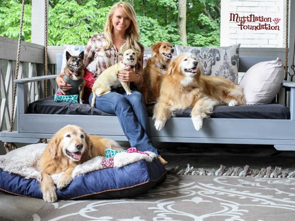 Miranda Lambert's MuttNation Partners With PetFirst to Offer Pet Insurance
