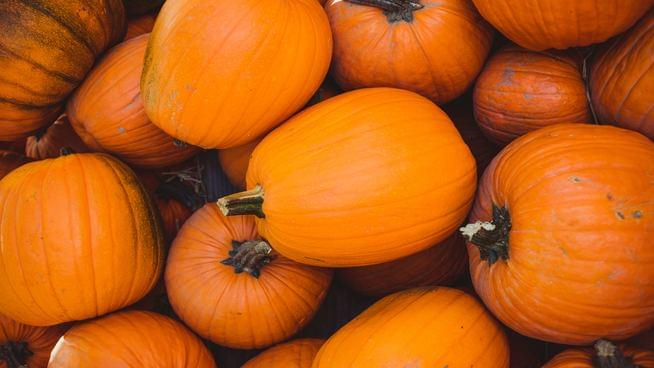Pumpkin Spice Spam Coming This Fall