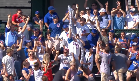 Beer Cup Snake At Wrigley Field