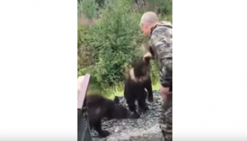 VIDEO: Russian Dude Tries Petting A Bear Cub, Instantly Regrets It