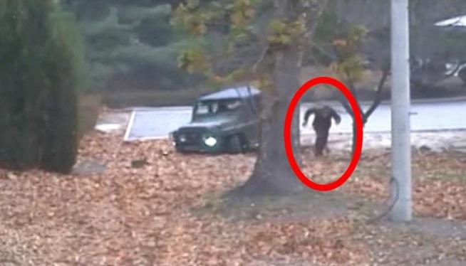 North Korea soldier - UN Command