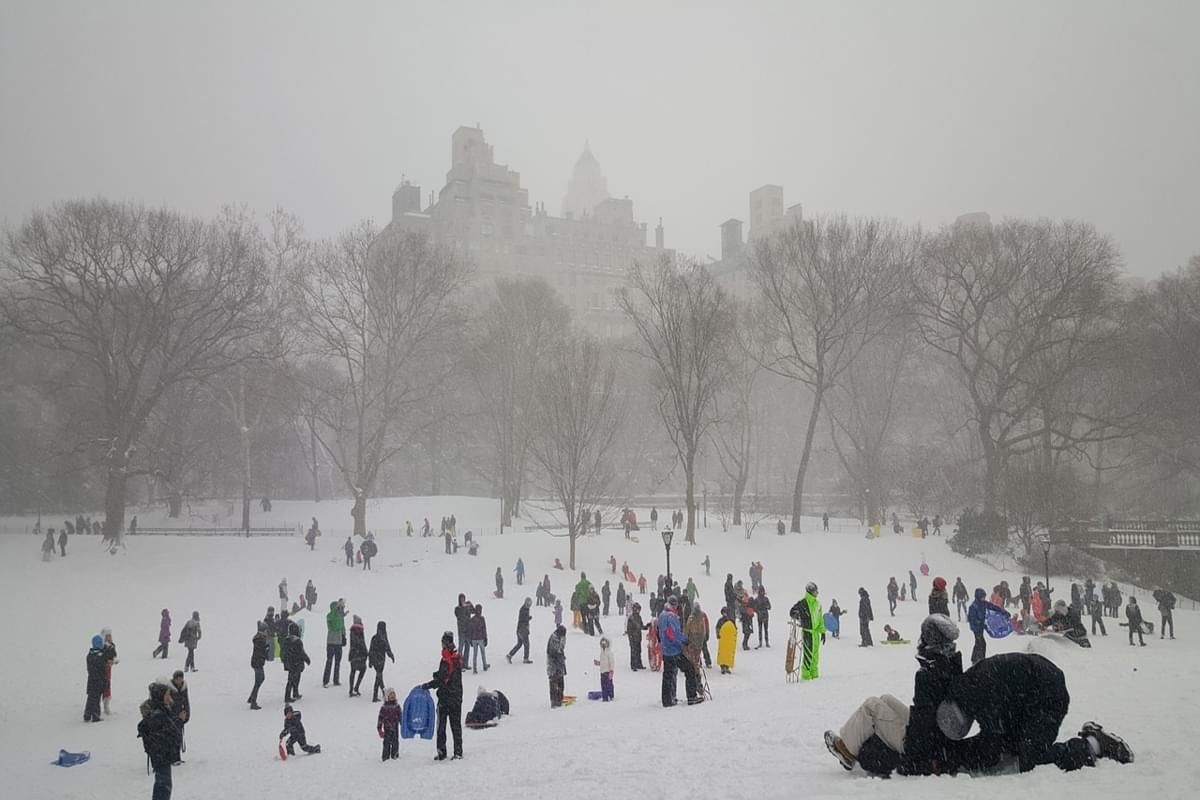 You can go Skiing this weekend at Central Park's Winter Jam