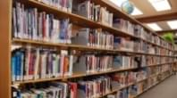 11 Public Libraries in Idaho Receive Grant from Google for Workforce Development