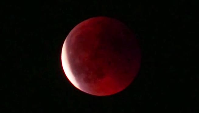 VIDEO: Last night's Total Lunar Eclipse (In case you missed it)