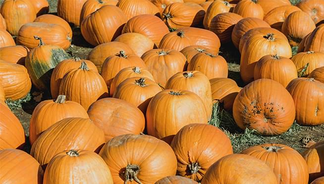 Eating more pumpkin can help your heart, boost your immunity, and aid weight loss