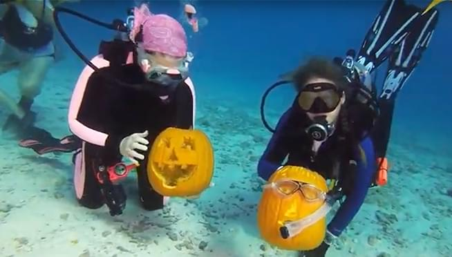 VIDEO: Scuba divers compete in underwater pumpkin carving contest