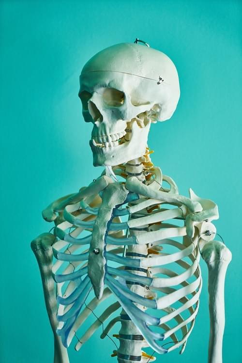 Skeleton Unearthed Beneath California Peak
