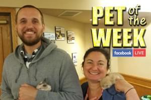 Pet of the Week!