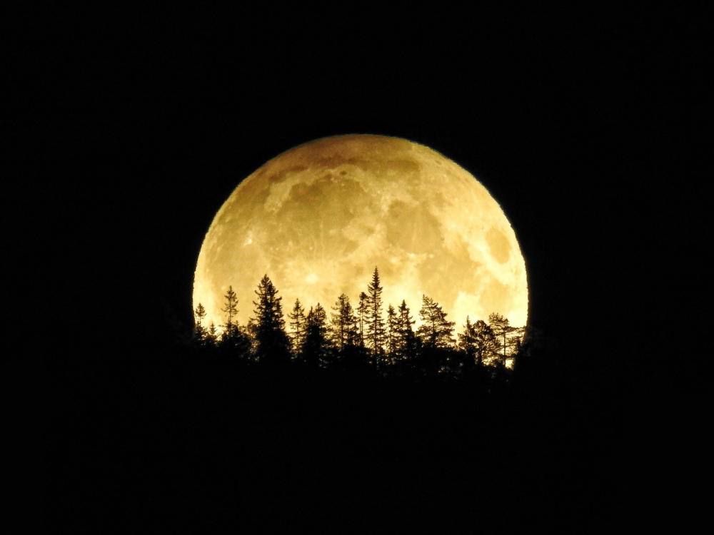 We Will See A Friday the 13th Harvest Moon