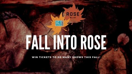 Fall Into Rose