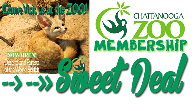 Sweet Deal: Chattanooga Zoo