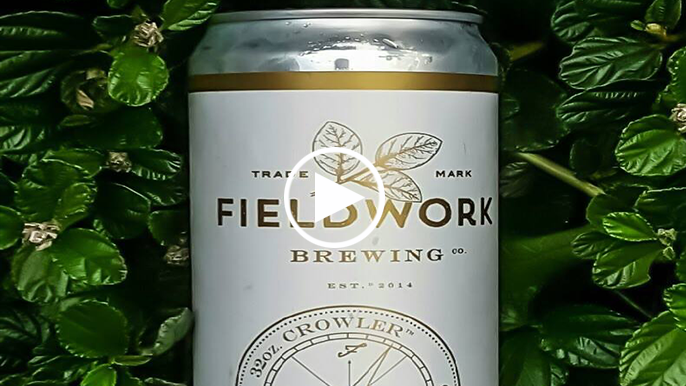 Tolbert's Beer Review: Fieldwork Brewing Co. Misfit Stream