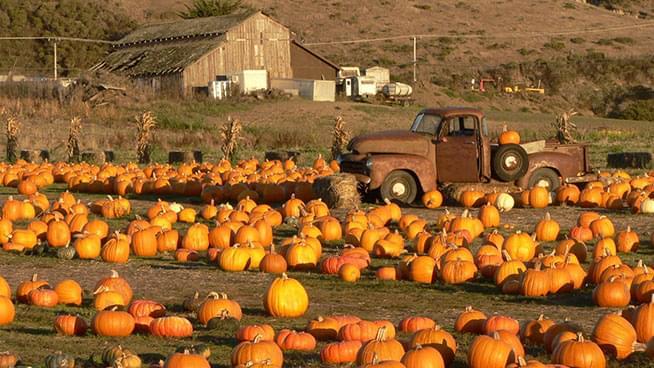 October 19 & 20: Half Moon Bay Art & Pumpkin Festival