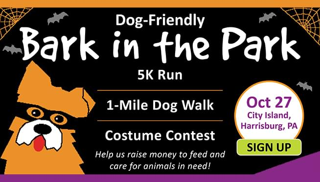 Bark in the Park • Oct 27th at City Island