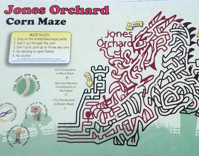 Jones Orchard – Corn Maze