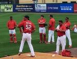 Cardinals Spring Training 2015
