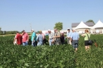 Soybean Association 'looking forward' to improved relations between US and Cuba