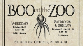 Boo At the Zoo, Glow Golf On Tap