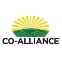 Co Alliance Llp