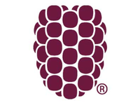 Dewberry logo