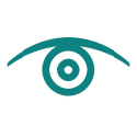 KnowledgeStorm (acquired by TechTarget) logo