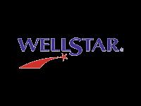 Wellstar Health  logo