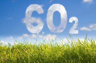 carbon_tax_sm