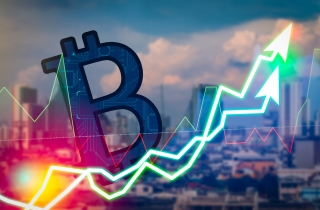 Bitcoins, bubbles and your burden to the CRA - The Lawyer's Daily