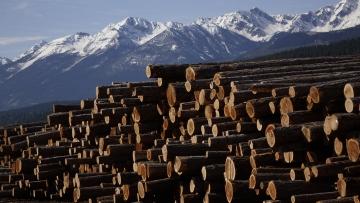 softwood_lumber_sm