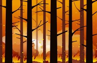 forestfire_sm.jpg