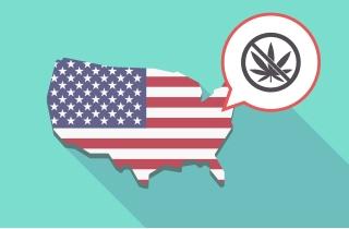 cannabis_border_sm
