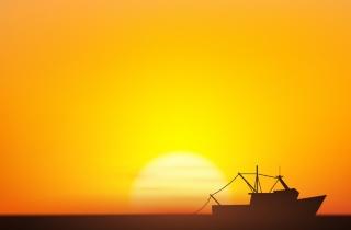 silhouettefishing